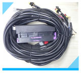 Factory Custom ECU Connector Auto Wire Assemblies for Car