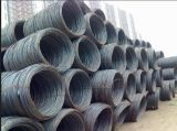 ASTM AISI Standard SAE 1006/1008/1010 Steel Wire Rod 8.5mm