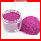 Glitter Powder 2013 New