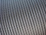 Stainless Steel Wire Rope 304 & 316
