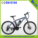 Fantastic & Functional E Bicycle with Lithium Battery