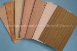 PVC WPC Panel Board/ Wood Plastic Celuka Foam Board