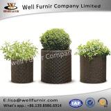 3 Piece Polypropylene Resin Rattan Pot Planter Set