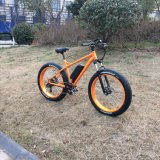 Big Power Electric Bike with Front Disk Brake