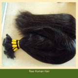 Unprocessed Virgin Remy Hair for Braiding Virgin Brazilian Human Hair Bulk (B-10)