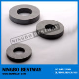 Customized Super Ferrite Ring Magnet From China