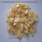 Garlic Flake Grade a, B, C with Root and Without Root with Good Quality