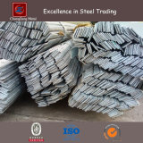Hot Rolled Galvanized Flat Steel Bar (CZ-F48)