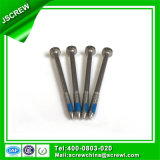Customized M3 Self Tapping Stainless Steel Screw