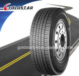 Double Coin Quality TBR Bus Tire 315/80r22.5, 13r22.5, 12r22.5