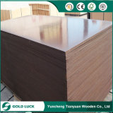 9-21mm Smooth Surface Poplar Core Film Faced Plywood