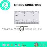 High Precision Custom Small Torsion Spring