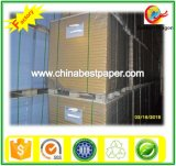210-450G Art Coated Board-White Color