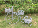 Decorative Shabby White Metal Garden Outdoor 3-Hole Bicycle Planter (BSCI, SGS)