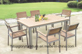 Garden/Patio Dining Table and Chairs for Outdoor Furniture (TG-021)