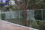 Hot Sale Outdoor Tempered Glass Railing with Stainless Steel Handrail