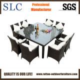Wicker Dining Furniture/ Wicker Dining Furniture (SC-A7270)