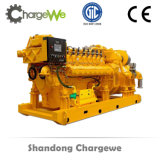 Ce ISO BV Authorized 10kw-600kw Biogas Generator of Fuel Biomass, Methane