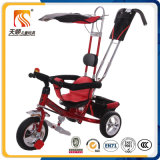 Three Wheeler Iron Frame Baby Tricycle with Push Bar