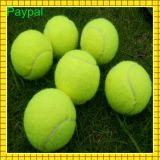 Hot Selling Sport Practice Exercise Tennis Ball (GC-TB001)