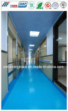 Ce Certficated Anti-Slip Spua School Flooring for Passageway/Corridor