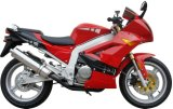 EPA/DOT Fast Racing Motorcycle Bike 250cc (HD250P-3)