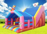 Inflatable Water Park or Water Jumping. Inflatable Toys