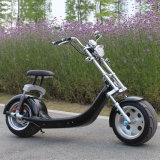 New Fat Tire Dirt Bike Citycoco off Raod Electric Bicycle