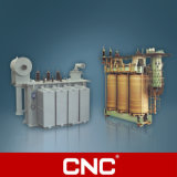 Power Transformer Of Oil Immersed/Dry Type (oil on-load/non-excitation tap-changing)