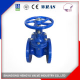 Non-Rising Gate Valve with Bare Shaft with Blue Color
