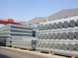 Hot Dipped Galvanized Steel Pipe/ Tube