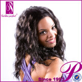No Tangle No Shedding 100% Virgin Remy Human Hair Full Lace Wig (GP-L004)