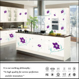 Zhihua UV Colour Painting Kitchen Design (FY-6618)