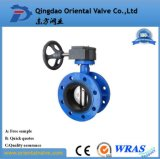 Worm Gear Operated Double Flange Concentric Butterfly Valve
