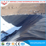 High Quality HDPE Geomembane for Aquaculture Farm Liner