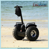 2000W Auto Balancing Electric Chariot with High Performance
