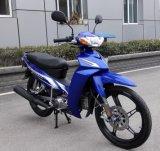 China Motorcycle 110cc, 120cc, YAMAHA Type Crypton 110