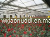50′ Greenhouse Exhaust Fan with CE Certificate