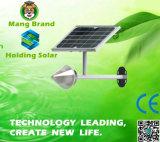 Monocrystal Panel Integrated Solar LED Garden Light with Waterproof