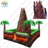 Popular Outdoor Inflatable Climbing Wall