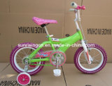 Colorful Chain Bicycle/Children Bicycle/Bike (SR-A119)