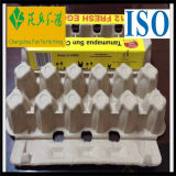 Egg Carton of Recycle Paper Moulded Pulp Shockproof