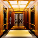 Residential Lift Passenger Elevator Price Chinese Factory Supplier