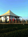 Waterproof Customized Dome Tents for Sale