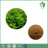 1-Deoxynojirmycin 1%~30% Pure Mulberry Leaf Extract/1-Dnj