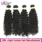 Pure Soft Dyeable Unprocessed Brazilian Virgin Hair Weft