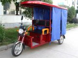 Hot Sellling China Manutacture Electric Rickshaw (300K-02L)