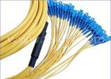 24 Core Singlemode Distribution Fiber Patch Cord/Multi-Fiber Patchcord