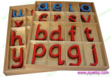 Large Movable Alphabet in a Split Level Box