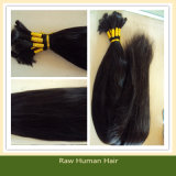 Unprocessed Virgin Remy Hair Bulk for Braiding Virgin Remy Brazilian Human Hair Bulk (B-10)